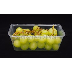 Food Container - 750ml (RECT)